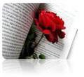 Un poema para ti